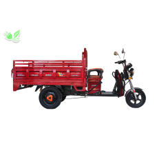 ARORA AR 10000 MOPED 80Ah